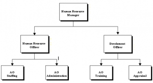 Structure of Human Resource Department