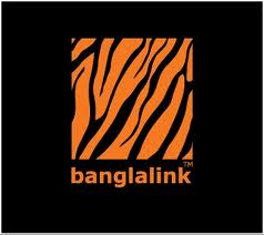 Organization Overview of Banglalink Digital Communications Limited