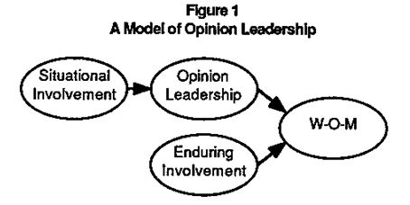 model of opinion leadership