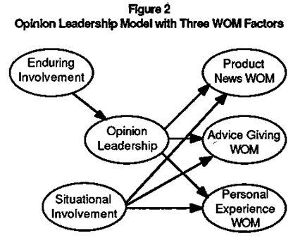 opinion leadership model