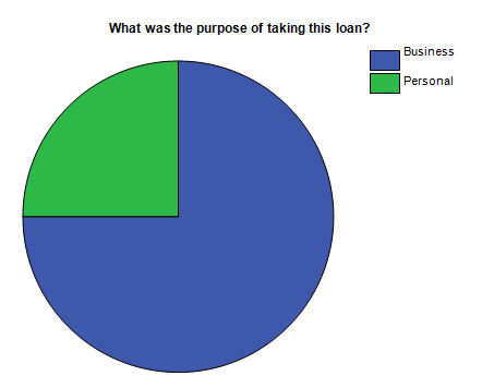purpose of taking this loan