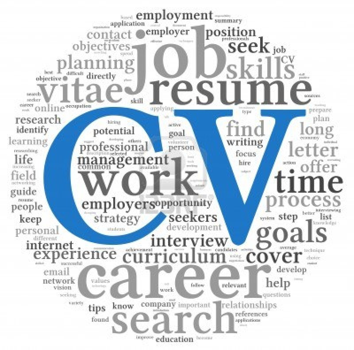 Sample CV Writing