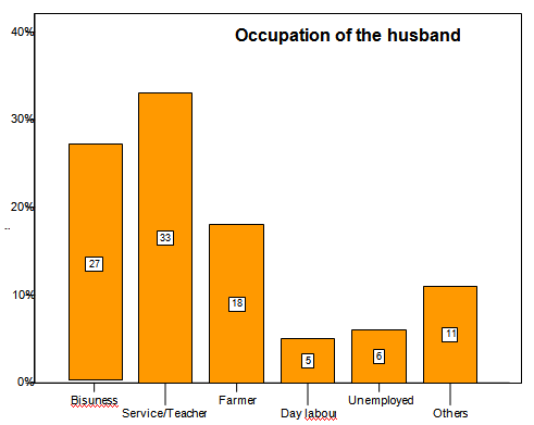 Distribution of the respondents by their husbands' occupation