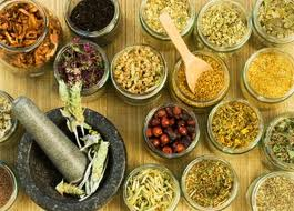 Indigenous Knowledge of Herbal Medicine in Bangladesh