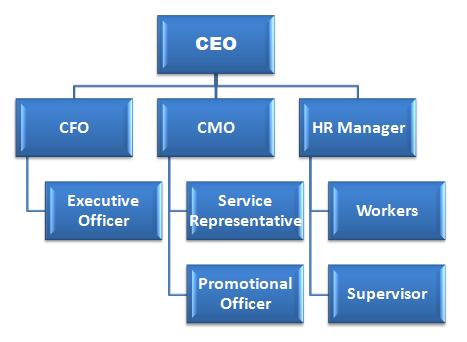 Organizational Hierarchy
