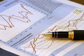 Report on Financial Statement Analysis