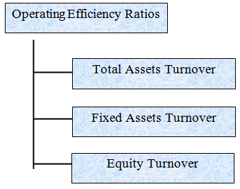 Types of Operating Efficiency Ratios