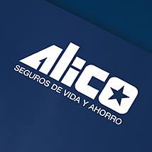 The Overall Recruitment Process of ALICO