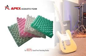 Marketing Mix Manipulation at Apex Foam Indutries