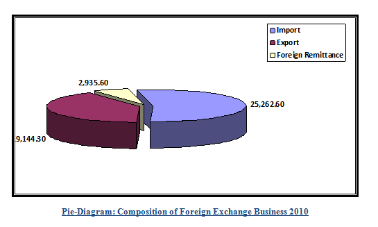 Composition of Foreign Exchange Business 2010
