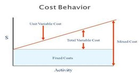 Lecture on Cost Behavior