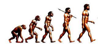 Evolution of HRM