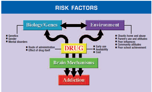 Factors Increase Risk Of Addiction