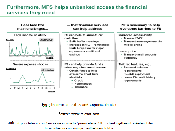 Income volatility and expense shocks