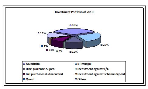 Investment Portfolio 2010