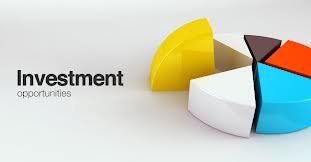 Investment Activities of Shahajalal Islami Bank Ltd