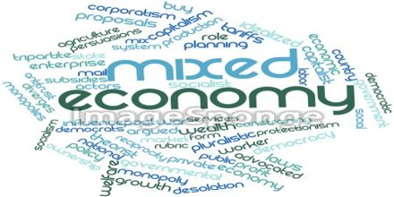 Presentation on Mixed Economy