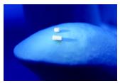 Posterior-segment drug-delivery system