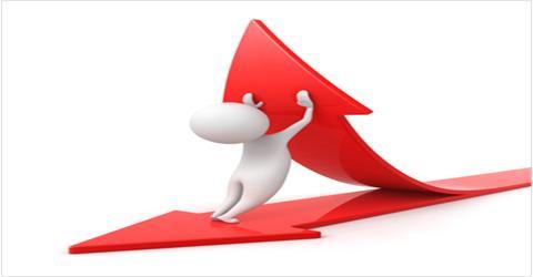 Flexible Budget and Overhead Analysis