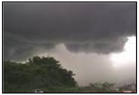 Black cloud as a mark of environmental signal