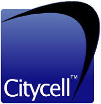 Assignment on Citycell