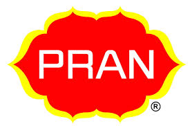Financial System of a Production Firm Pran Group