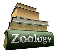 Economic Zoology