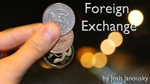 Duties in Foreign Exchange Division