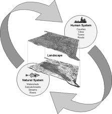 Urbanization Process