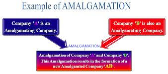 Method of Accounting for Amalgamation