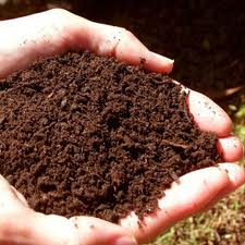 Particle Size Analysis of Soil Sample