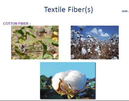 Textile Fiber 1