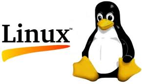 Client Server Setup and Configuration Using Linux.
