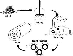 Pulp and Paper Making Process