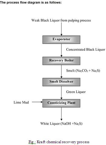 Pulp And Paper Making Process Assignment Point