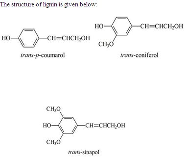 Chemical makeup of bleach