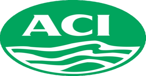 Internship Report On Compensation and Benefits Package of ACI