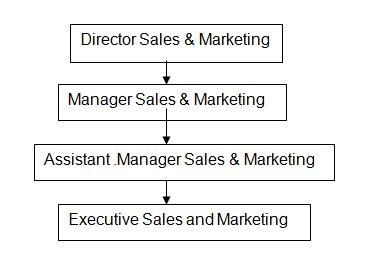 Director Sales and Marketing