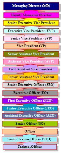 Hierarchy of SJIBL