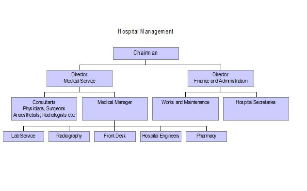 Designing Computer Aided Hospital Management System