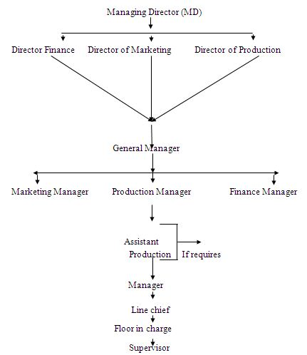 The diagram of administration