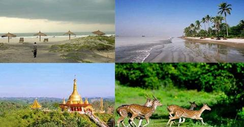 Government and NGO role to Develop Tourism Sector