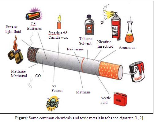 Toxic Metals in Tobacco Cigarettes and Tobacco Products