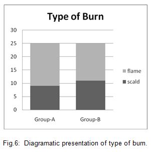 Diagramatic presentation of type of burn