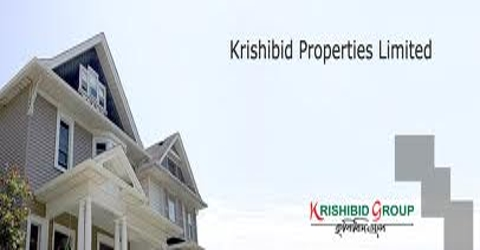 Overall Marketing Activities of Krishibid Properties Limited
