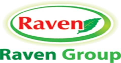 Supply Chain Strategies of Raven Agro Chemicals Limited