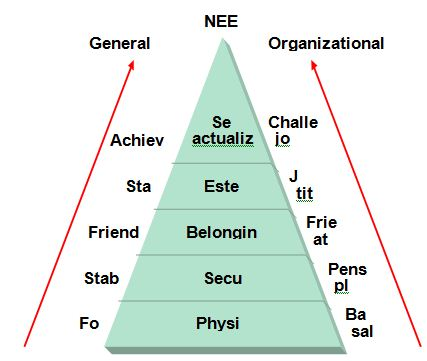 basic needs theory