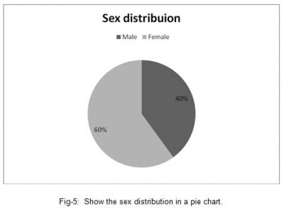the sex distribution in a pie chart