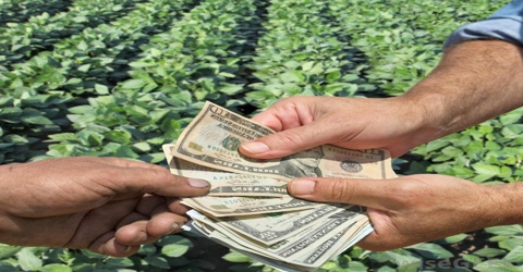 Evaluation of Agriculture Credit Programs under Credit Policy