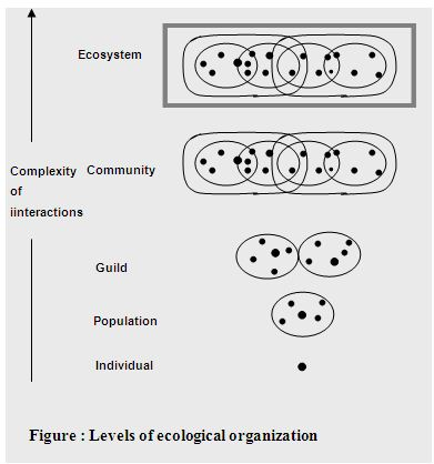 Escherichia coli and Shigella species in the Freshwater Environment